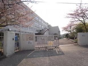 津之江小学校